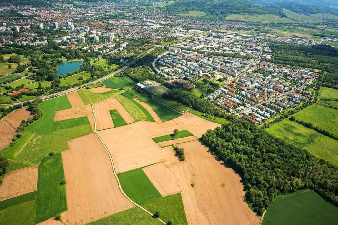 Der Großteil der Baufläche im Freiburg...en ist inzwischen unter Dach und Fach.  | Foto: Nils Theurer