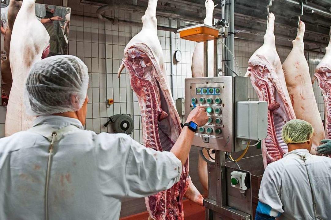 Das Bundeskabinett berät am heutigen M...er den Arbeitsschutz in Schlachthöfen.  | Foto: Ingo Wagner (dpa)