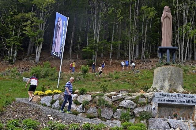 Sportler verschönern Gelände rund um die Marienstatue