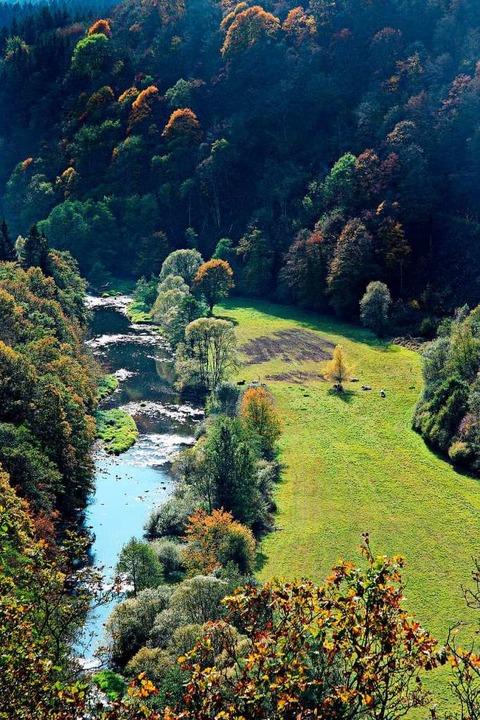 Entspannt die die Natur genießen: Idyllisches Ourtal im Nationalpark Eifel  | Foto: Bernd F. Meier (dpa)