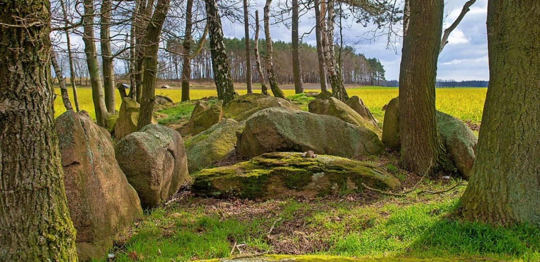 Mythische Stätte: Hünengrab in der Altmark inSachsen-Anhalt    Foto: Klaus-Dietmar Gabbert (dpa)