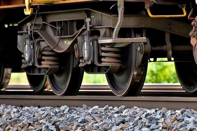 Vorbereitungen für Trassenbau zwischen Schallstadt und Buggingen beginnen