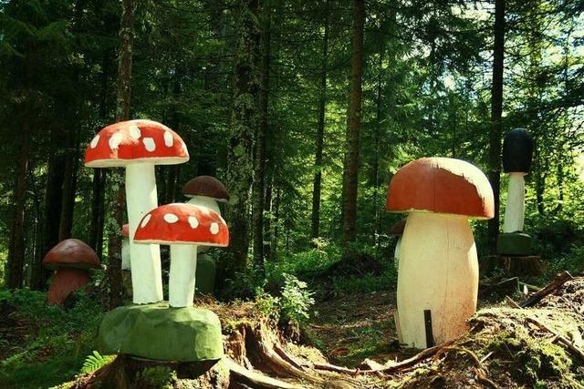 Der Zauberwaldpfad in Bernau ist wirklich bezaubernd
