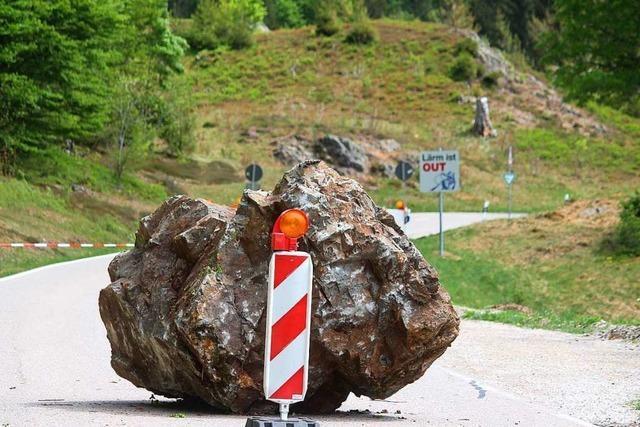 Wald bei Präg darf nach Felssturz nicht betreten werden