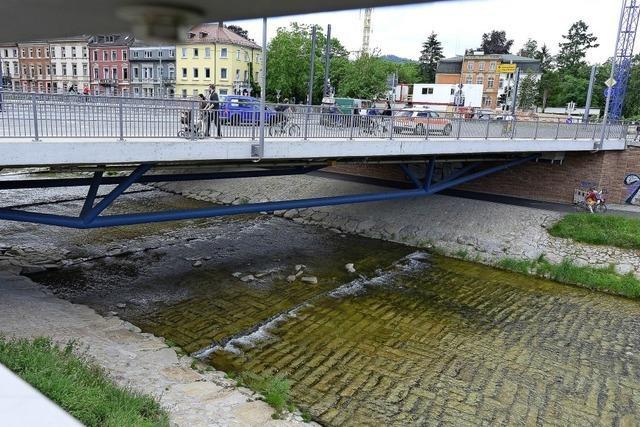 Ausbesserungen an der Kronenbrücke