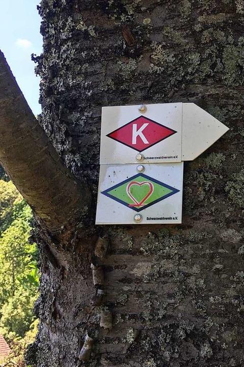 Immer der grünen Raute mit dem roten H...n nach. So ist der Weg ausgeschildert.  | Foto: privat