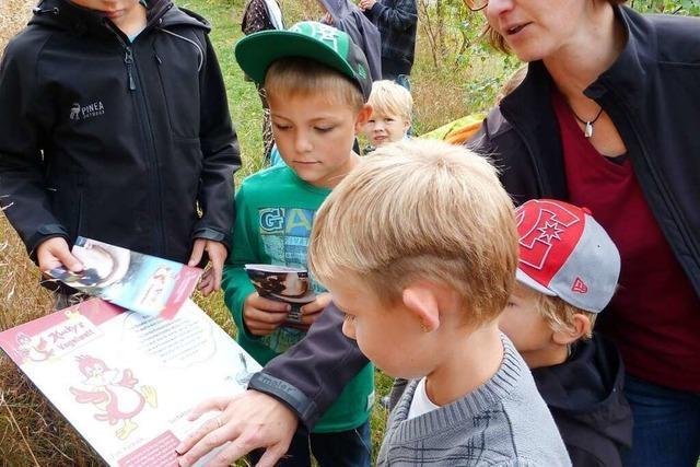 Kucky's Vogelwelt ist ein Rundweg mit vielen Spielangeboten für die Familie