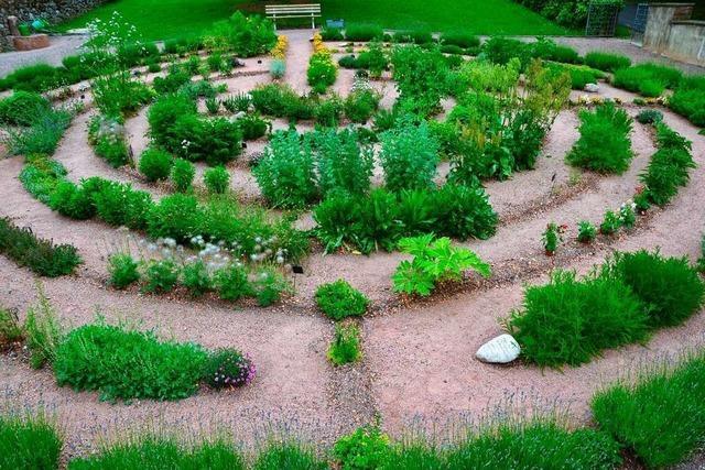 Das Kräuterlabyrinth in Schweighausen hat sich zu einem kleinen Paradies entwickelt