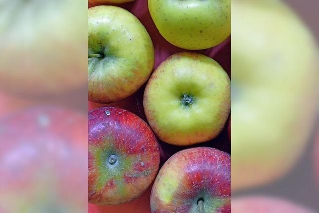 Können Obst und Gemüse eine Erfindung sein?
