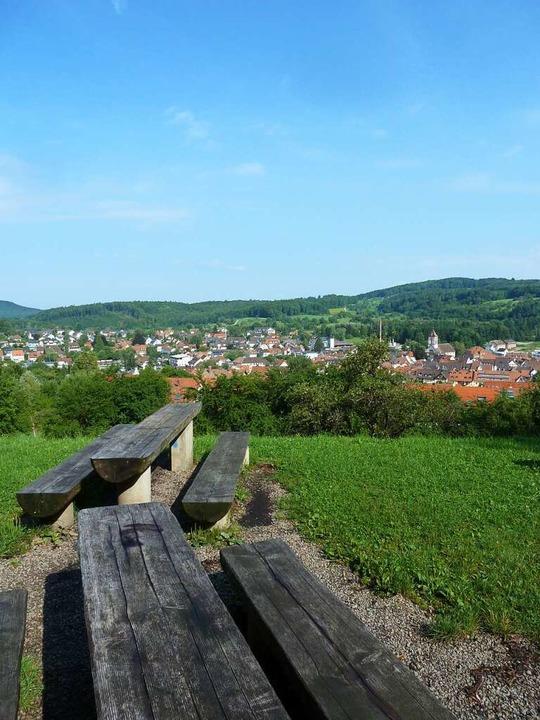 Vom Grillplatz des Walderlebnispfads a...t man einen schönen Blick auf Kandern.    Foto: Flora Baumgartner