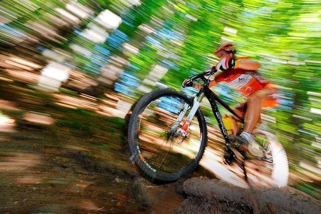 Immer mehr Ärger zwischen Spaziergängern und Mountainbikern im Stadtwald