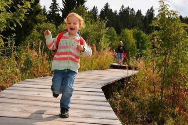 Erlebnispfade für Familien mit Kindern im Schwarzwald