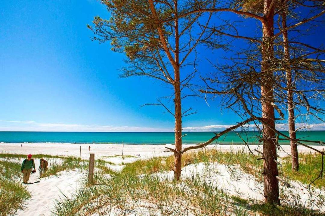Der Weststrand auf der Ostsee-Halbinse...önsten Strände Europas gewählt worden.  | Foto: Jens Büttner (dpa)