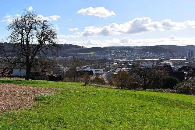 Interessengemeinschaft äußert Bedenken zum Baugebiet im Tumringer Norden