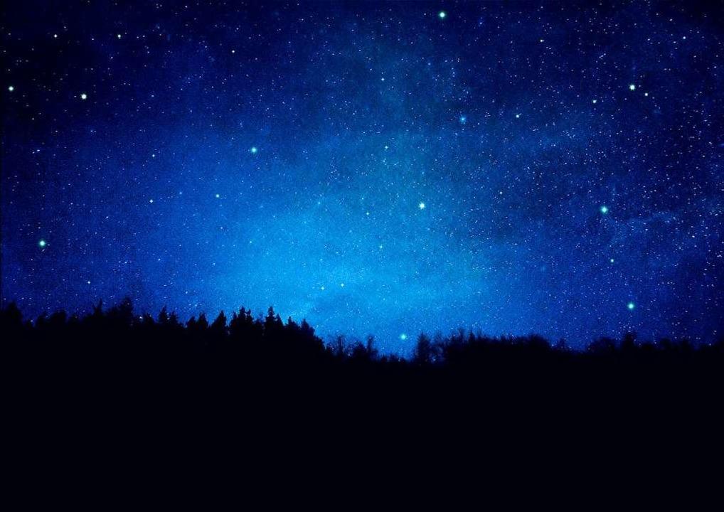 Sterne über einem Wald (Symbolfoto)  | Foto: reichdernatur  (stock.adobe.com)