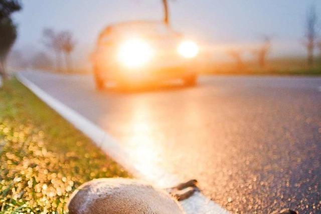 Frau setzt Auto in Acker und geht nach Hause