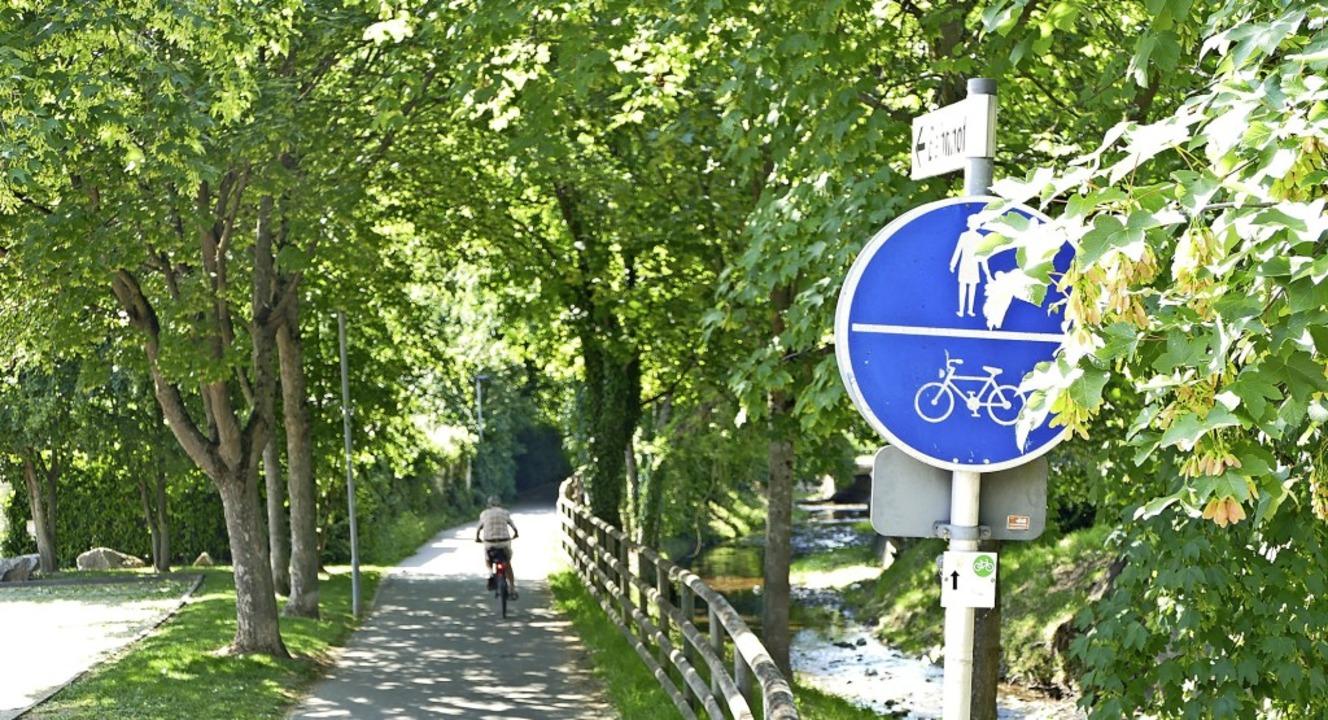 Gefährliche Stellen für Radfahrer verm...s Markgräflerland auf ihrer Homepage.   | Foto: Sophia Hesser