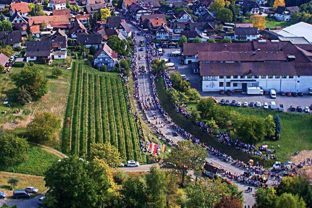So wie beim Weinfest samt Umzug 2019 i...walden wird es 2020 sicher nicht sein.  | Foto: Roland Spether