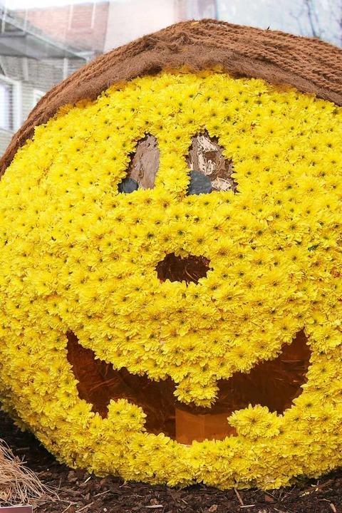 Handel und Gastronomie hoffen auf die Chrysanthema im Herbst.  | Foto: Christoph Breithaupt