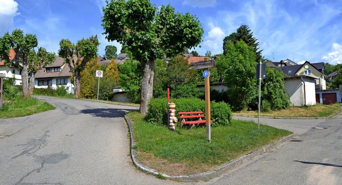 Die Verkehrsinsel mit Ahornbaum und V-...ibt auf Wunsch der Anlieger erhalten.   | Foto: Liane Schilling