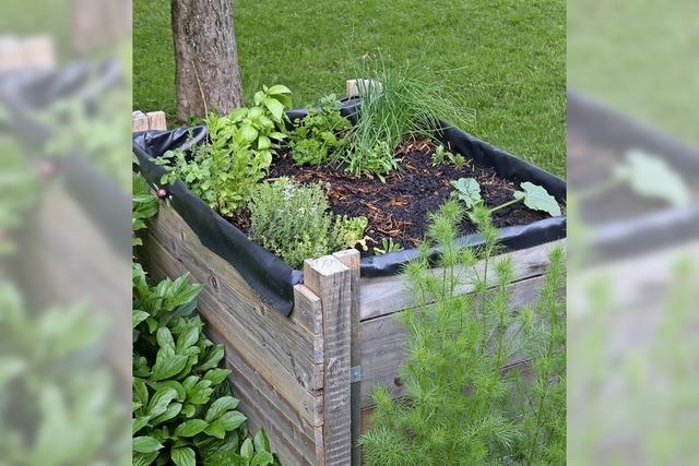 Gartenarbeit ganz ohne Rückenschmerzen