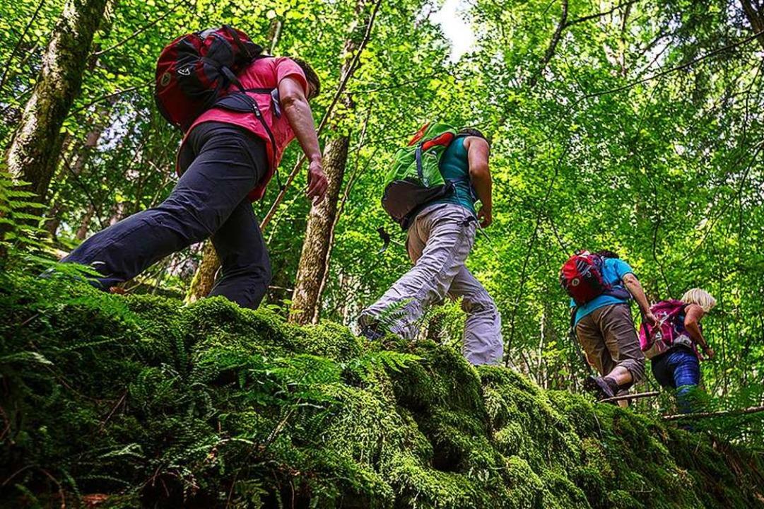Die Gratwanderer wollen besondere Touren anbieten.  | Foto: David Lohmueller