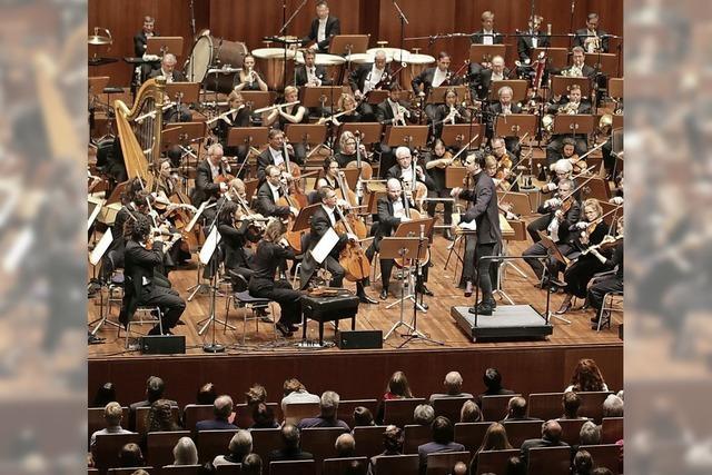 Konzerte für einen Zuhörer