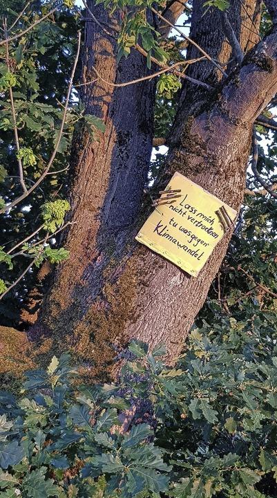 Mahnung zum Klimaschutz, gesehen an einem Baum bei Kollmarsreute.  | Foto: Gerhard Walser