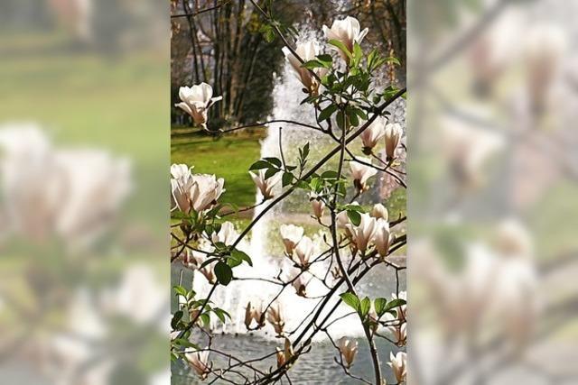 Ein staubtrockener Frühling ist zu Ende gegangen