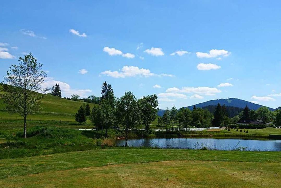 Gepflegter Golfer-Rasen und naturbelassene Areale wechseln einander ab.  | Foto: Andreas Strepenick