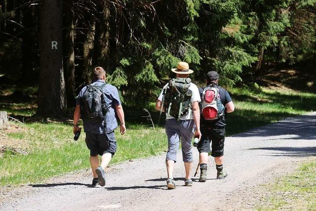 Die Wandervereine in der Region bereiten die Saison nach Corona vor