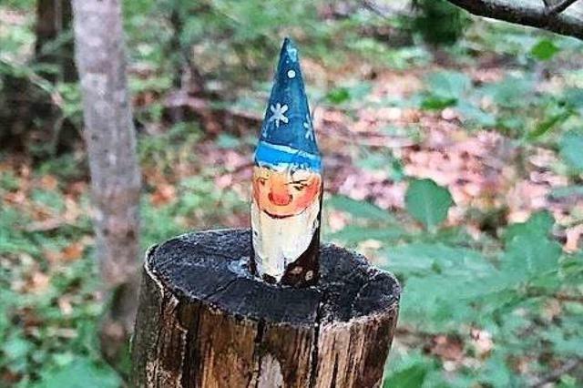 Im Wald fühle ich mich wie ein kleines Kind auf Schatzsuche