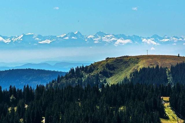 Wer braucht schon Strand und Mallorca? Wenn der Schwarzwald so nah ist?