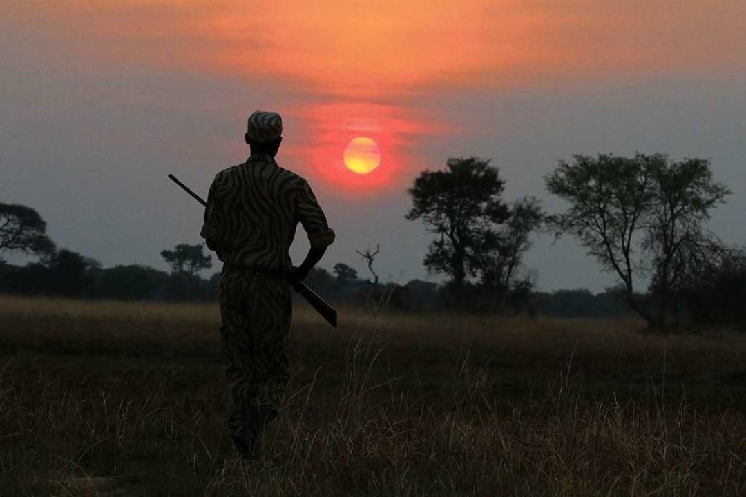 Der fehlende Tourismus schafft freie Bahn für Wilderer.  | Foto: Winfried Schumacher