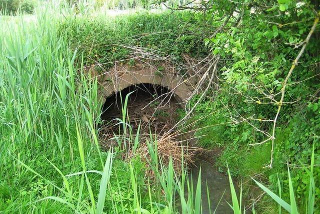 Die Sandsteinbrücke über den Leimbach ist älter als angenommen