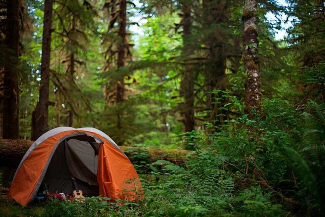 Für viele Naturliebhaber romantisch, für Tiere purer Stress: Wildcamping  | Foto: Elana  (stock.adobe.com)