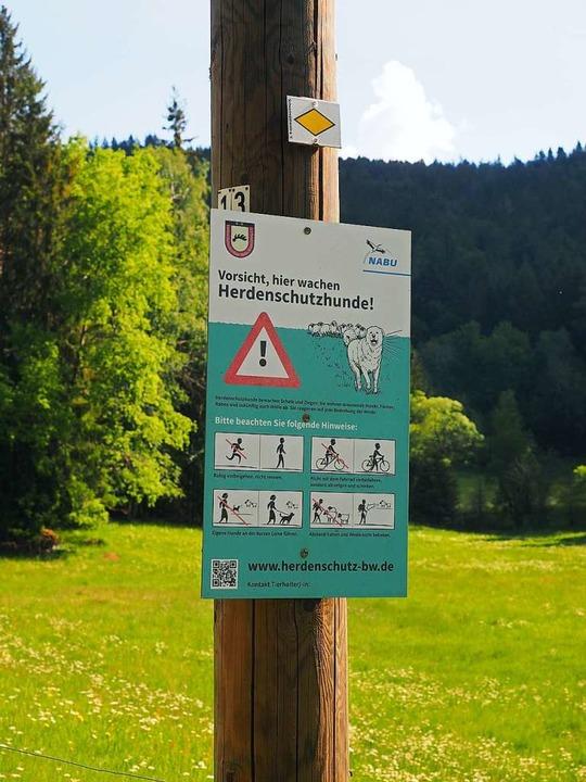 Schilder mit Verhaltenstipps weisen au... Herdenschutzhunde im Windbergtal hin.  | Foto: Susanne Gilg