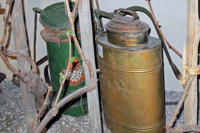 Vor 100 Jahren wurde Arsen im Weinbau erlaubt – mit fatalen Folgen