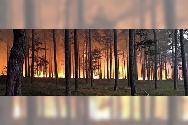 Regen senkt Angst vor Waldbränden