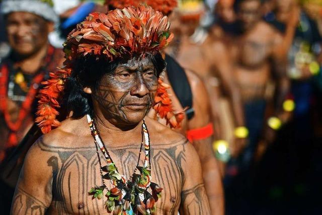 Wie Brasiliens indigene Völker von Politik und Pandemie zugleich bedroht werden