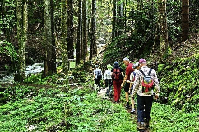 Wanderer und Radler sollen Wege im Biosphärengebiet nicht verlassen
