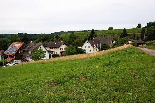 Der Müllheimer Rat stimmt für Bebauungsplan in Feldberg
