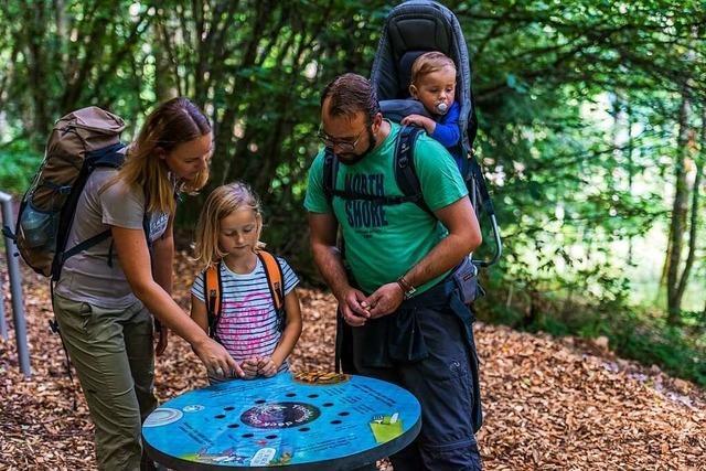 Bei Höchenschwand können Familien auf der Spur der Wölfe wandern