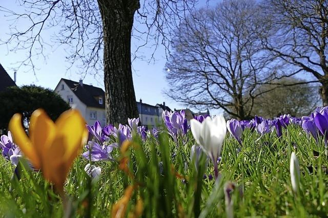 Sonnigster Frühling seit Messbeginn
