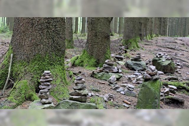 Steinchen stehen still im Wald
