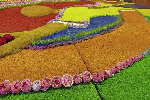Blumenteppich im Chorraum