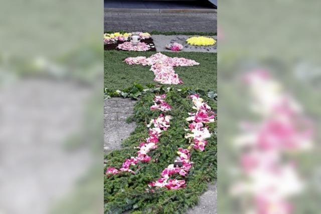 Blumenteppiche in Schuttern und Ottenheim