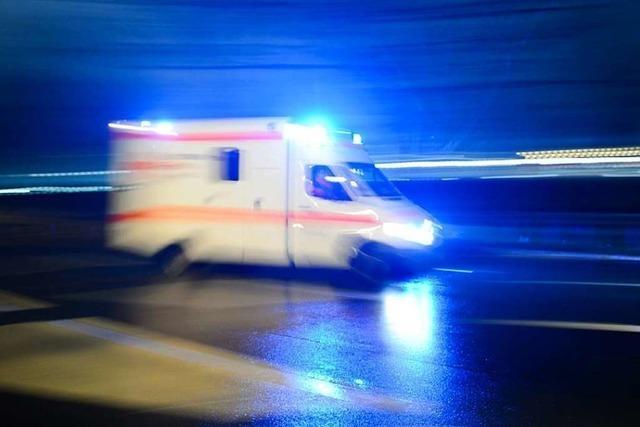 Fahrradfahrerin von Pferdeanhänger erfasst und schwer verletzt