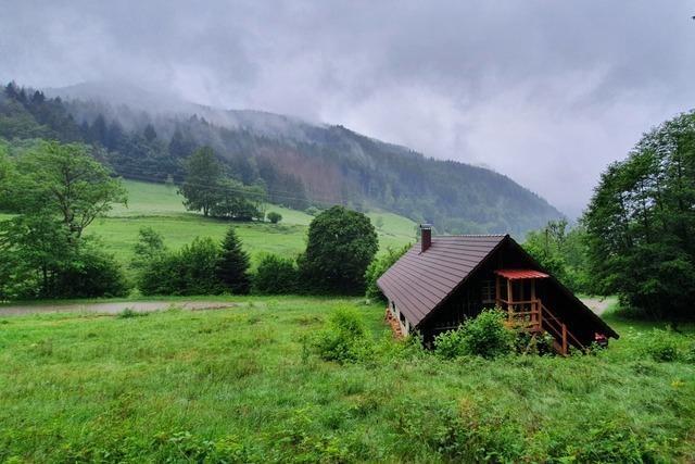 Neuer Erlebnispfad bei Oberried zeigt die wilde Schönheit des Schwarzwalds