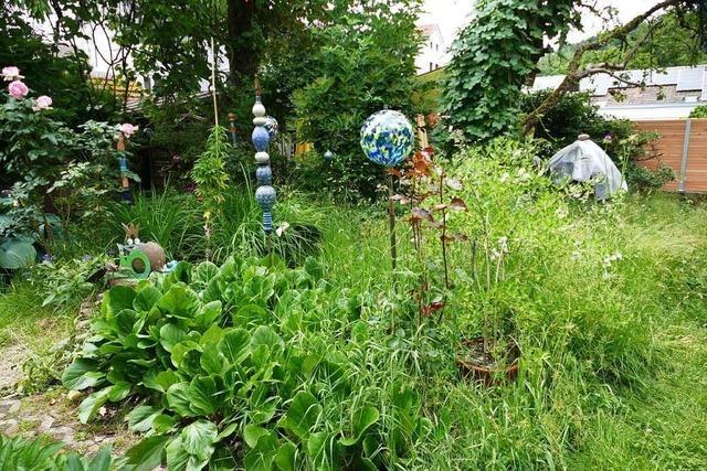 Grüne Oase statt graue Ödnis – zu Besuch in einem Schopfheimer Naturparadies